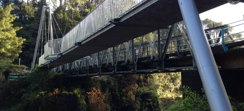McLaren Falls pedestrian bridge