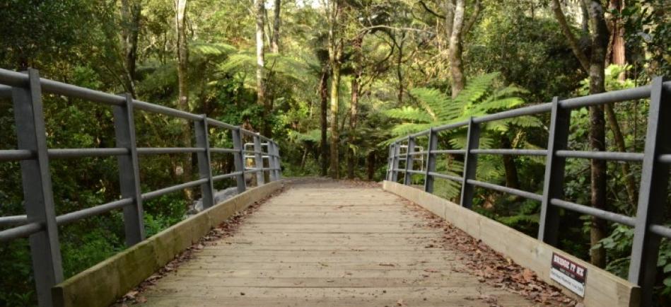 CUTE cycleway bridge Waihi