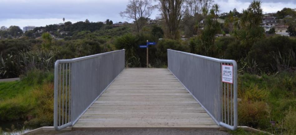 Light Weight SBTD bridge Kopurererua Valley