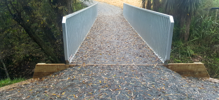 Sandford Park pedestrian bridge replacement significantly reduces cost to Hamilton City Council